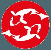 Burnham-on-Sea Aquatic Services