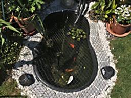 Ornamental Pond Build Burnham-on-Sea