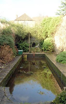 Pond Cleaning & Maintenance Burnham-on-Sea