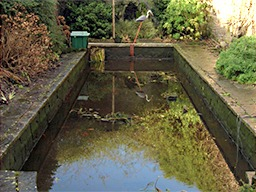 Pond Cleaning and Maintenance Burnham-on-Sea