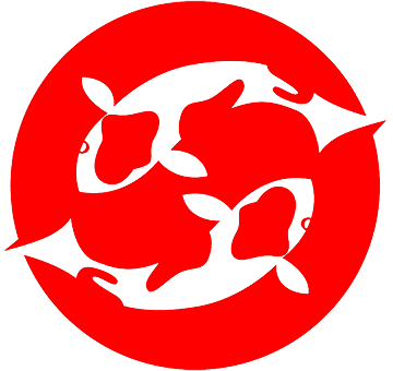 Ponds Koi Carp and fish husbandry