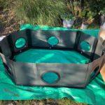 Fish Re-home & Quick Pond Build
